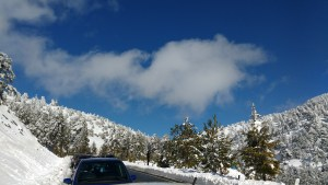 Snow in the Troodos mountains