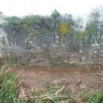 Tombstone William Harvey Cummins JR
