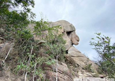 獅子山 4 (石馬脊)