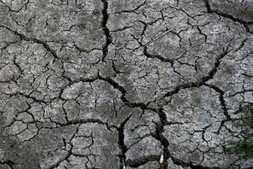 Drought2012Cracks