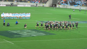 Rugby All Blacks Pumas