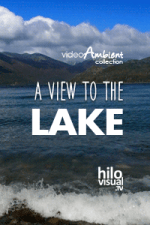 A VIEW TO THE LAKE - Download Nature Videot