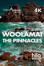 WOOLAMAI-THE PINNACLES - Descargar video de naturaleza en 4K