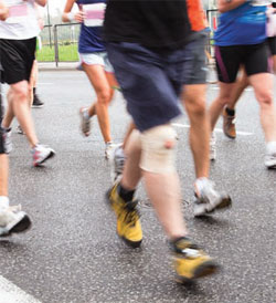 19th Annual Hilton Head Hospital Jingle Jingle Family 5K Run & Health Walk