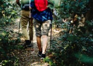 two people with backpacks trekking in the forest