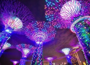 8 Top-Rated Tourist Attractions in Singapore {Updated 2020} 3