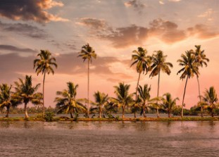 Alleppey - The Venetian Capital of India 2