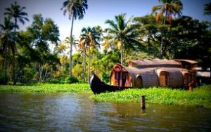 Ecotourism - Top states promoting Ecotourism in India 2