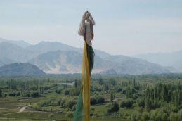 ladakh aug 09 015