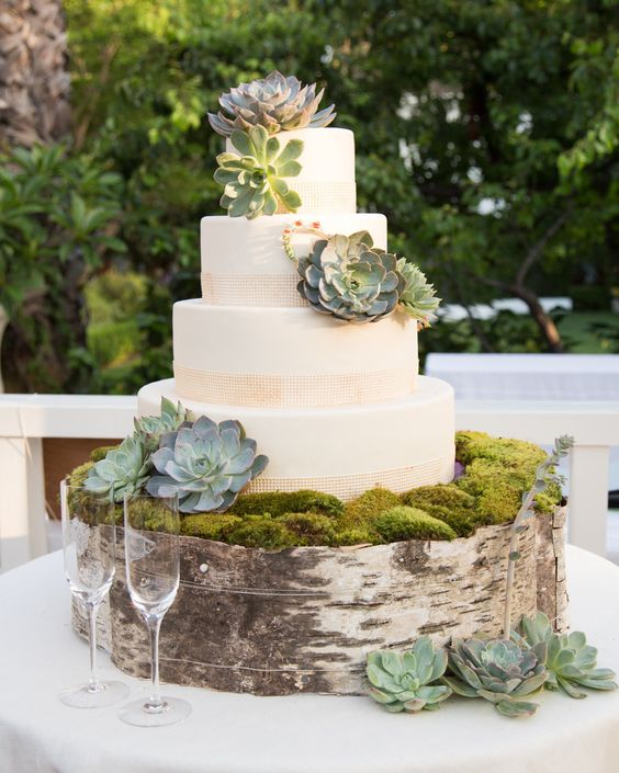 succulent wedding cake and birch moss wedding cake stand     Hi Miss Puff succulent wedding cake and birch moss wedding cake stand
