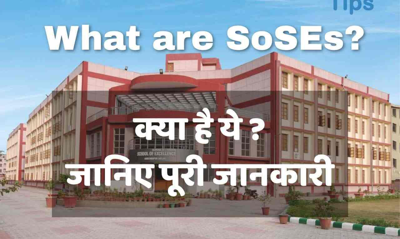 Government of NCT of Delhi SoSEs