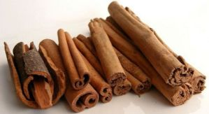 Cinnamon meaning