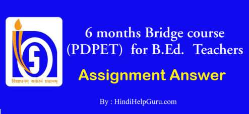 Bridge Course Assignment answer
