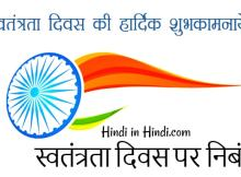 hindiinhindi Independence Day Essay in Hindi