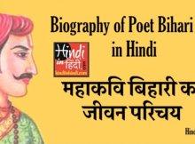 hindiinhindi Poet Bihari Lal in Hindi