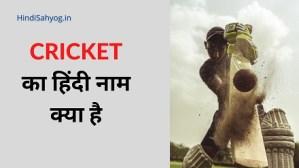 cricket ka hindi name