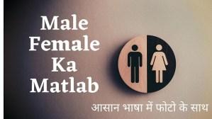 Male Female Ka Matlab in Hindi