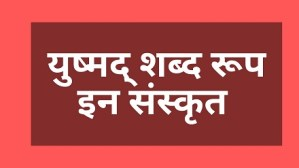 Yushmad shabd roop in sanskrit