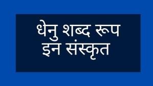 Dhenu shabd roop in Sanskrit