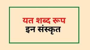 Yat shabd roop in Sanskrit