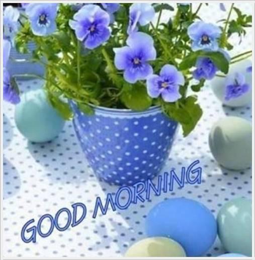 good morning photo hd51