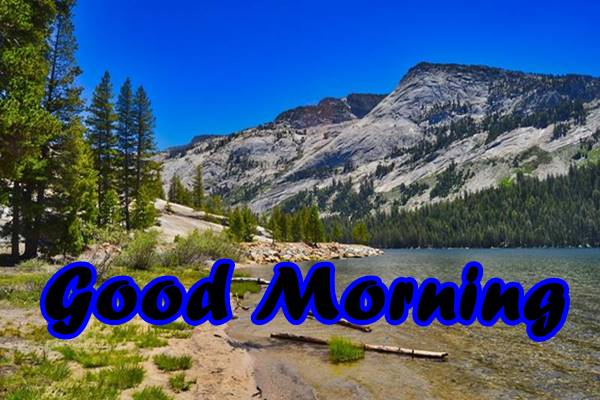 Good Morning Nature Images Photos HD 32