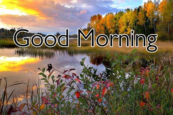 Good Morning Nature Images Photos HD 39