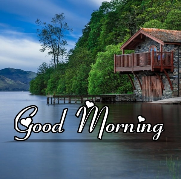 Best Good Morning Images HD Free Download 110