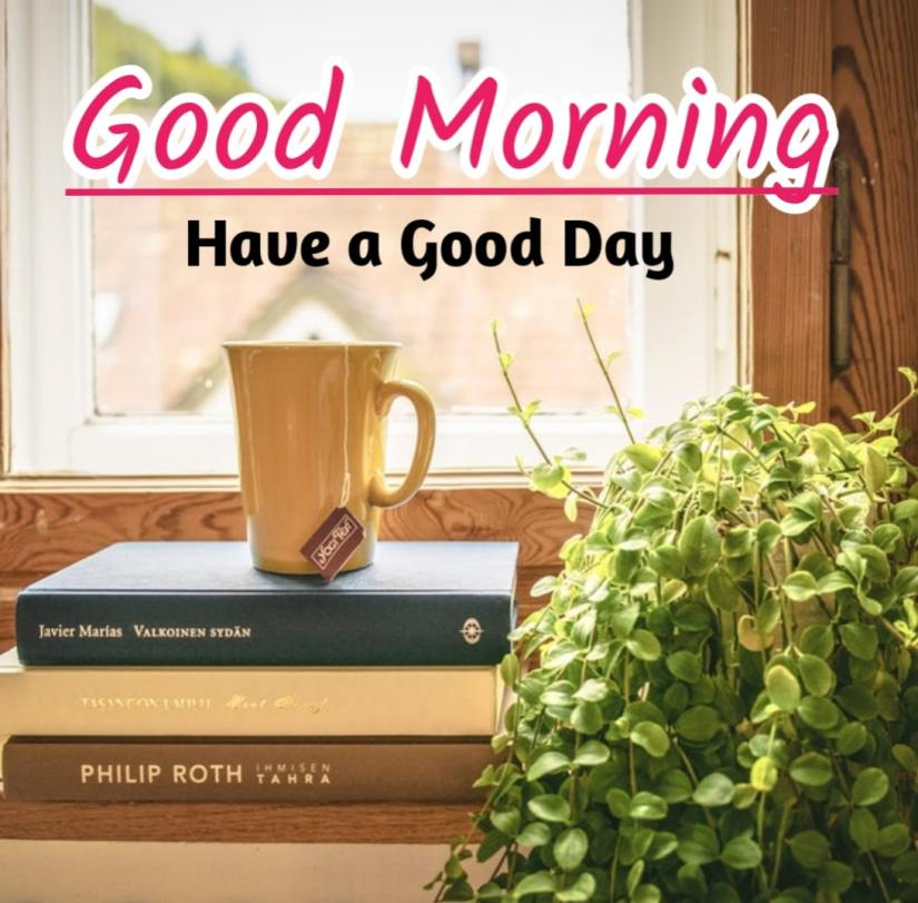 Best Good Morning Images hd8