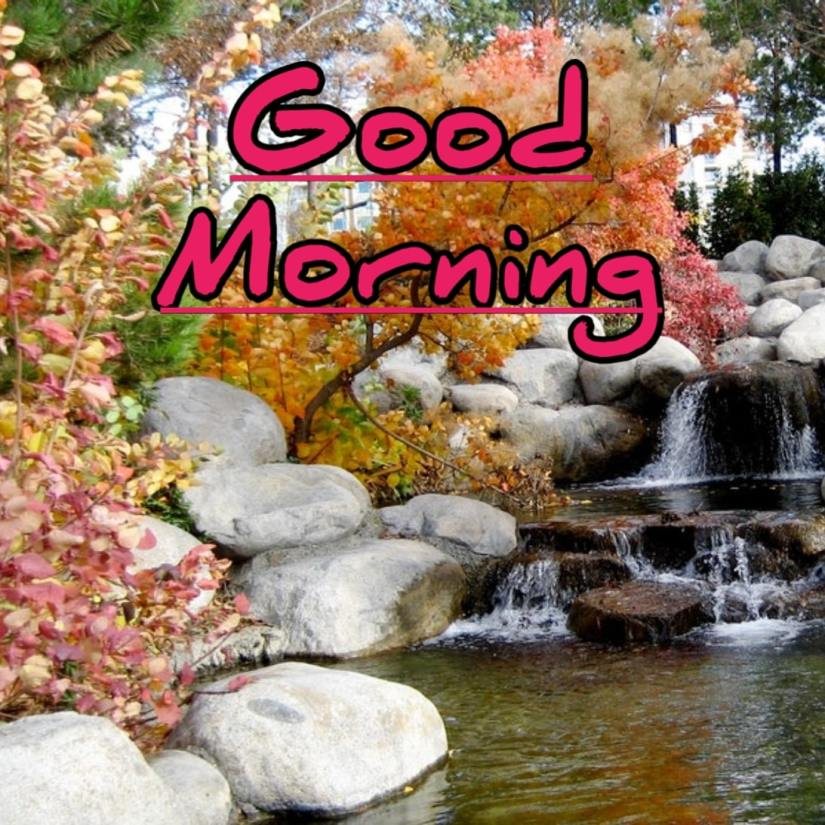 Best Good Morning Images HD Free Download 30