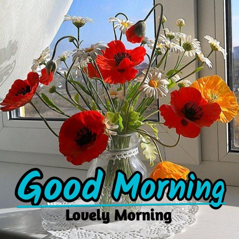 Best Good Morning Images HD Free Download 54