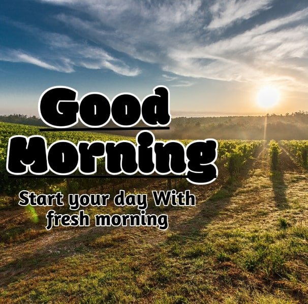 Best Good Morning Images HD Free Download 57