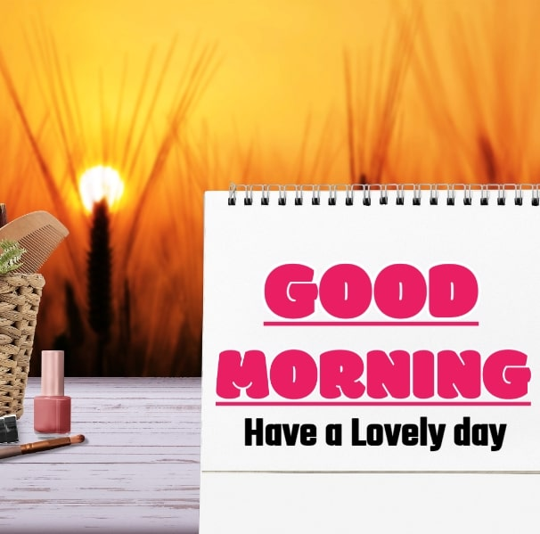Best Good Morning Images HD Free Download 93