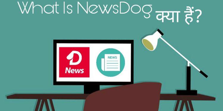 News dog kya hai aur paise kaise kamaye