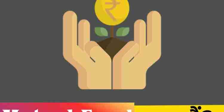 Mutual Funds क्या हैं? भारत मे Mutual Fund कितने प्रकार के हैं?