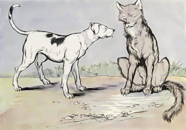 भेडि़या और कुत्ता - ऐश्वर्य भरी गुलामी की जिन्दगी स्वतंत्रता से कहीं अधिक मंहगी होती है