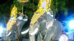 Kerala Hindus culture