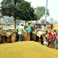 Modi double blow corners self-serving farmer lobbies, NGOs