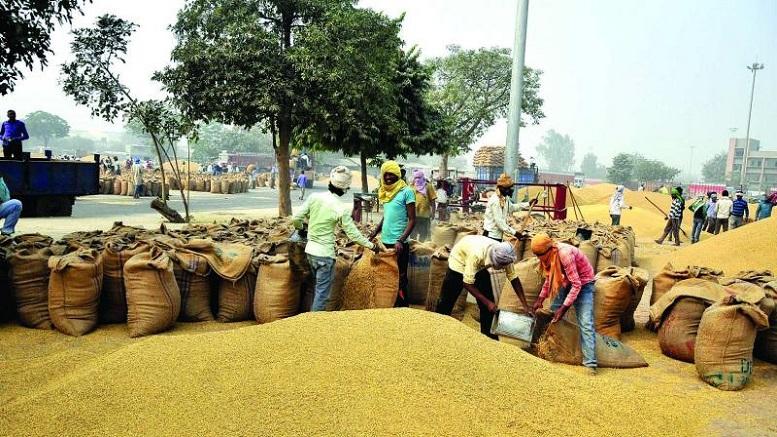 agriculture market reforms