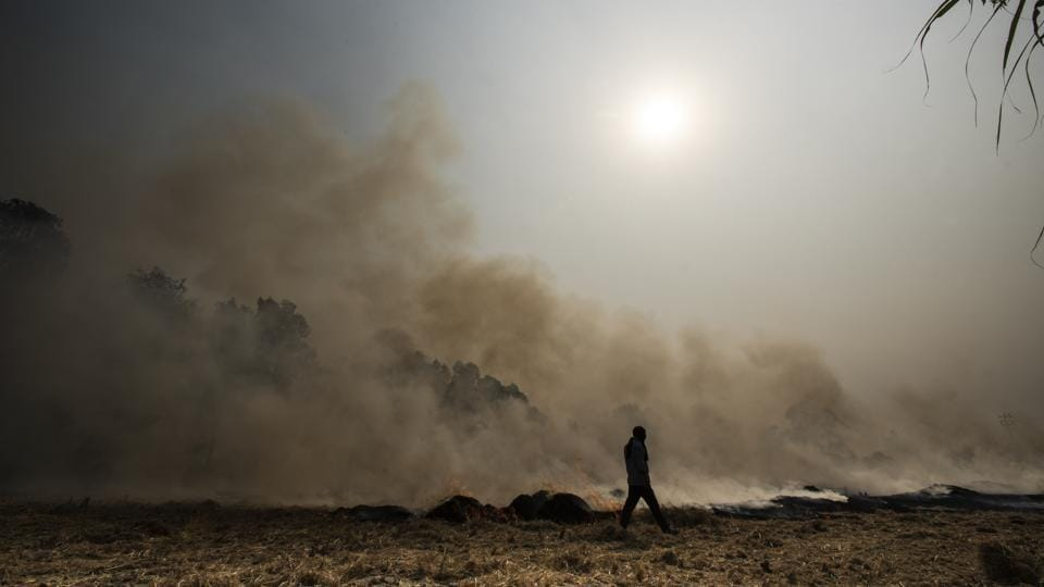 As many as 35 million tonnes are burnt in Punjab and Haryana alone to make room for the winter crop.