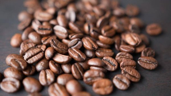 Coffee bean extracts can reduce fat-induced inflammation
