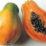 2013 - 12. kohal papayad