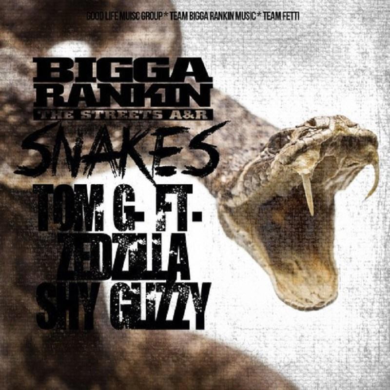 Snakes Tom G