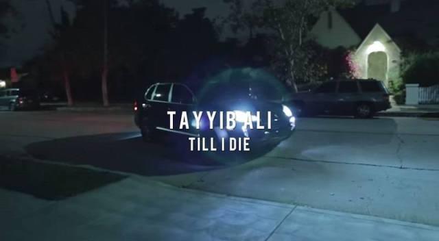 Tillidievid