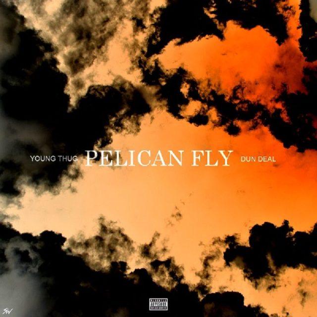 Pelican Fly