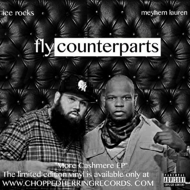 Fly Counterparts