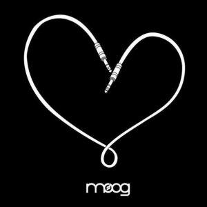 Moogfest #NoHateInOurState