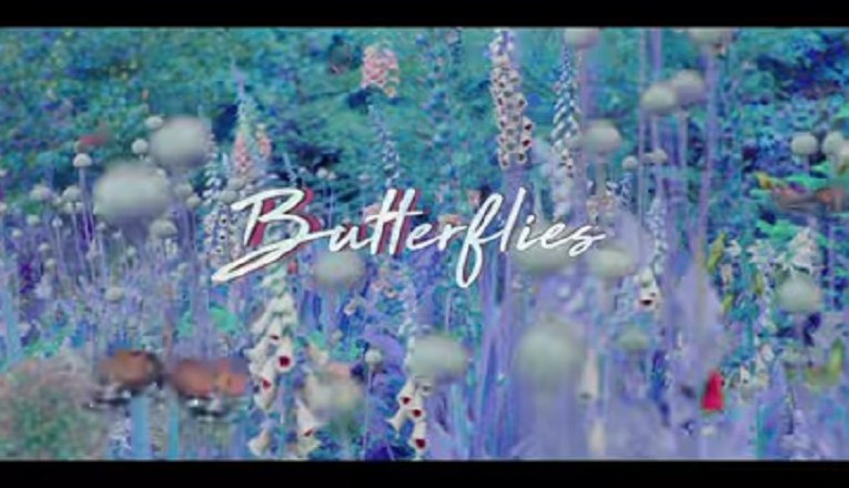 "Queen Naija returns with her music video for ""Butterflies, Pt. 2,"" her new single."