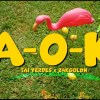 Tai Verdes A-O-K music video