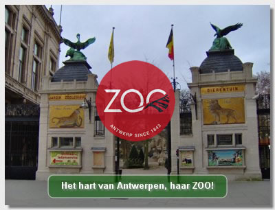 Zoo Antwerpen Hip Hot Blogazine